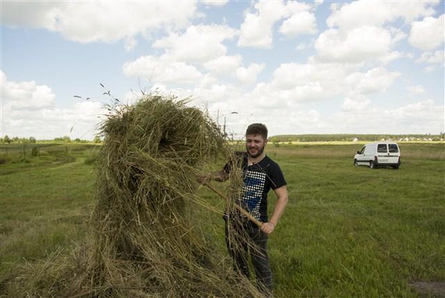 Hay field Ukraine