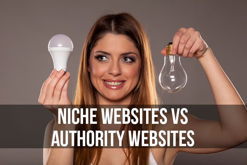 should you build niche or authority sites